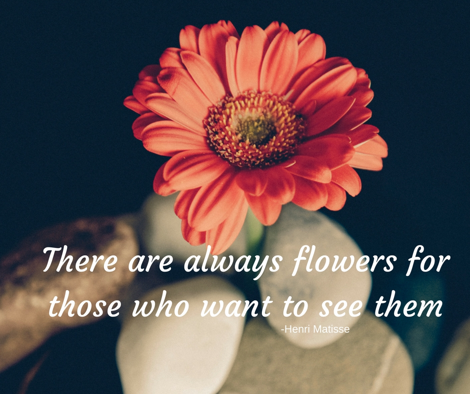 There are always flowers for those who want to see them